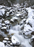 Winter panoramic view Royalty Free Stock Photography