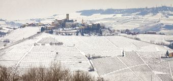 Langhe winter vineyards view. Color image. Winter panoramic view of the hilly region of Langhe in the southern area of Piemonte Region, Northern Italy, with a stock photography
