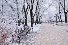 Winter Park, αλέα Στοκ εικόνα με δικαίωμα ελεύθερης χρήσης