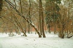 Winter Park, για το μοναστήρι Στοκ Φωτογραφία