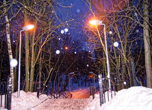 Winter Park στη Μόσχα τη νύχτα Στοκ Φωτογραφία