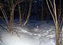 Winter Park στη Μόσχα τη νύχτα Στοκ εικόνες με δικαίωμα ελεύθερης χρήσης