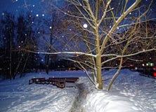 Winter Park στη Μόσχα τη νύχτα Στοκ Εικόνες