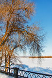 Winter Park στο ανάχωμα Στοκ Φωτογραφίες