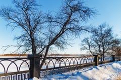 Winter Park στο ανάχωμα Στοκ Εικόνες