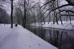 Winter in Park 12 Stockbild