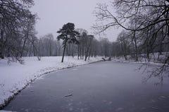 Winter in Park 2 Lizenzfreies Stockfoto
