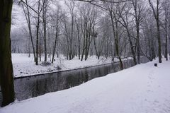Winter in Park 3 Lizenzfreies Stockbild