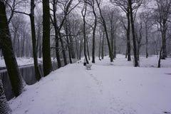 Winter in Park 4 Stockbild