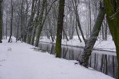 Winter in Park 9 Stockfotos