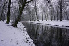 Winter in Park 10 Stockfotos