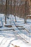 Winter in the Park. Suspension bridge in Winter Park Stock Images