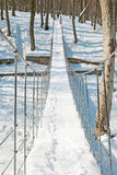 Winter in the Park. Suspension bridge in the park in winter Stock Photos