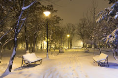 Winter in the park. By night Royalty Free Stock Images