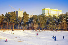 In winter park Stock Photos