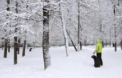 Winter park Stock Photography