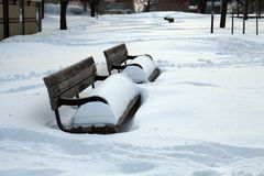 Winter in the park. Snow covered benches in a park in Toronto, Canada Stock Photography