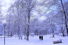 Winter park. Couple in a winter park Royalty Free Stock Photography