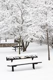 Winter park. Landscape with bench under the snow Stock Image