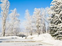 Winter park. Square in winter park at fine cold weather Stock Photography