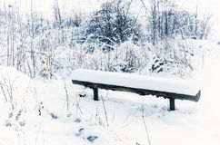 Winter park with bench Stock Photo