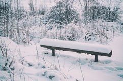 Winter park with bench Royalty Free Stock Photos