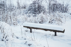Winter park with bench Stock Images