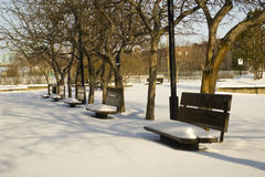 Winter park bench untouched snow incity Stock Images