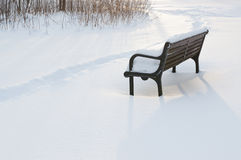 Winter park bench Royalty Free Stock Photo