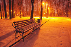 Winter park with benches covered with snow in the evening Royalty Free Stock Photography