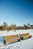 Winter park benches Royalty Free Stock Image