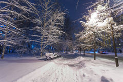 Winter park covered with white snow Royalty Free Stock Photography