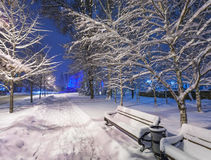 Winter park covered with white snow Royalty Free Stock Image