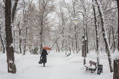 Winter park covered with white snow Royalty Free Stock Images