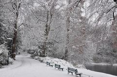 Winter park in centre city Dusseldorf Royalty Free Stock Image