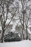 Winter Park in Dusseldorf Royalty Free Stock Image