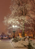Winter park in the evening covered with snow Royalty Free Stock Photo