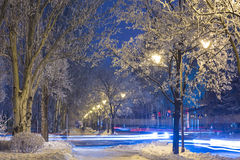 Winter park in the evening covered with snow Royalty Free Stock Photos