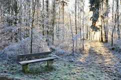 Winter park in Franzensbad, at the springs Natalie with wooden bench Royalty Free Stock Image