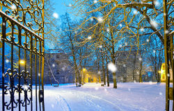 Winter park with gateway in the snowfall by night, Town of Posto Royalty Free Stock Image