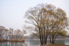 Winter Park landscape, Stock Photo
