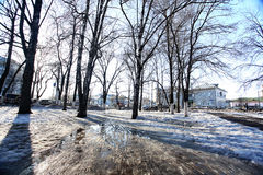 Winter park landscape on sunny day Stock Image