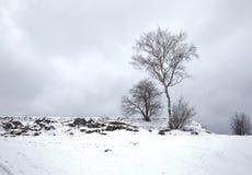 Winter Park Landscape Royalty Free Stock Images