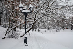 Winter park. Lights in the snow. Walk in the park Royalty Free Stock Photos