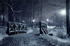 Winter park at night. Frosty winter in dark park Stock Photo
