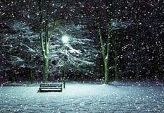 Winter park at night Royalty Free Stock Photos
