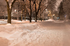 Winter park at night Royalty Free Stock Image