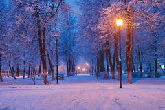 Winter park at night. At sunrise long expusure Royalty Free Stock Images