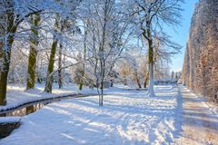Winter park in Oliwa. Snow covered city park in a winter day. Oliwa, Poland Royalty Free Stock Images