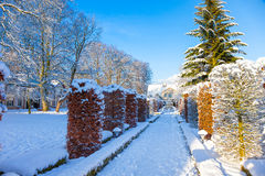 Winter park in Oliwa. Snow covered city park in a winter day. Oliwa, Poland Stock Photos